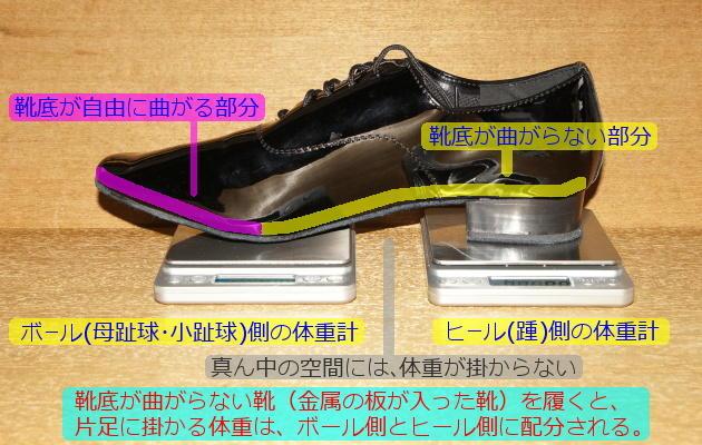 hashisoko-doc2.jpg