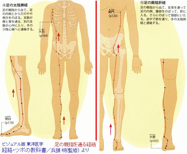 tsubo_yubi630.png